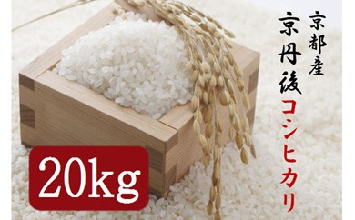 平成29年度 京丹後コシヒカリ 20kg