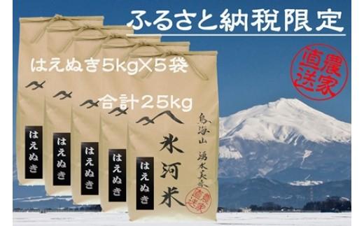 NE24 平成30年産 「氷河米」はえぬき25kg AG