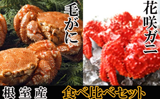 CC-48002 【北海道根室産】花咲ガニ500~650g前後×1尾・毛ガニ600~750g前後×1尾