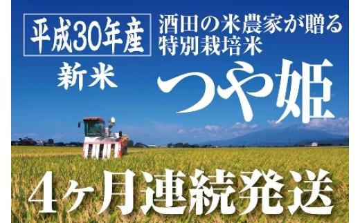 NC110 平成30年産米 「酒田の米農家から直送!」庄内産つや姫5kgを4ヵ月連続発送! 計20kg SI