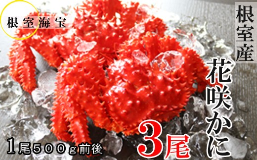 CB-48001 【北海道根室産】花咲ガニ500g前後×3尾