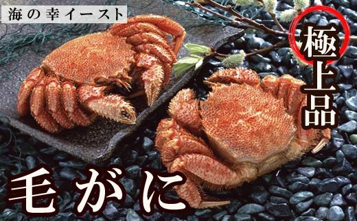 CC-32001 【北海道根室産】毛ガニ500~650g前後×2尾