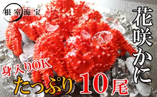 CD-48005 【北海道根室産】花咲ガニ450~550g前後×10尾