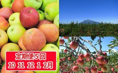 [№5898-0090]定期5回 津軽のりんご便り約5kg 10種プレミアムコース