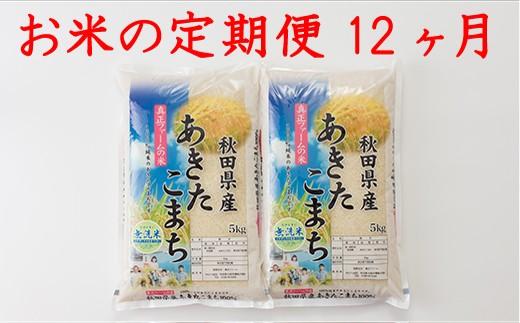 新米予約【定期便12ヶ月】600P3001 秋田県産あきたこまち(無洗米)10kg【600P】