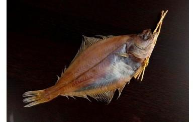 日本海産エテカレイ一夜干し 特大5枚セット