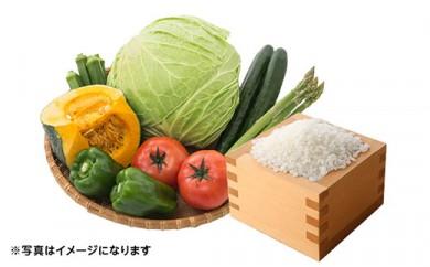 【年2回お届け】減農薬無化学肥料栽培 季節の野菜とコシヒカリ2㎏