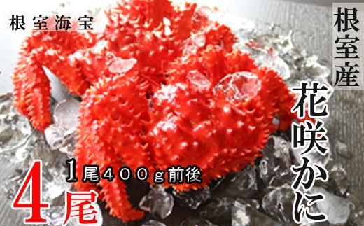 CA-48004 【北海道根室産】花咲ガニ400g前後×4尾