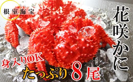 CC-48004 【北海道根室産】花咲ガニ300~450g前後×8尾