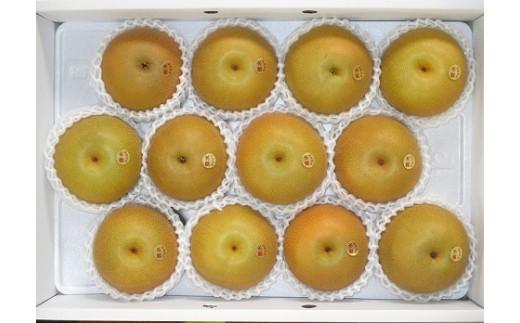 D-3 【残りわずか】豊水梨 秀品 4Lサイズ 5㎏濃厚な甘みと爽やかな酸味がジューシー。大人気です