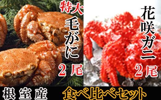 CD-48004 【北海道根室産】花咲ガニ600~750g前後×2尾、毛ガニ600~850g前後×2尾