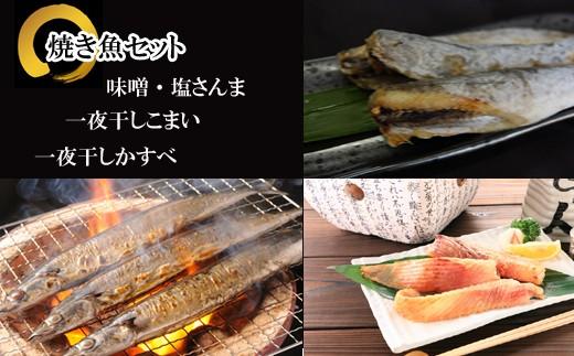 CA-48003 【北海道根室産】焼き魚詰め合わせセット