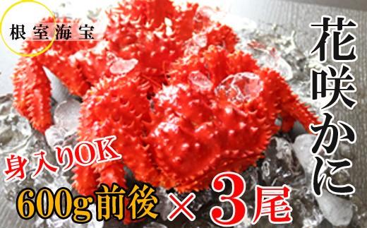 CC-48005 【北海道根室産】花咲ガニ600g前後×3尾