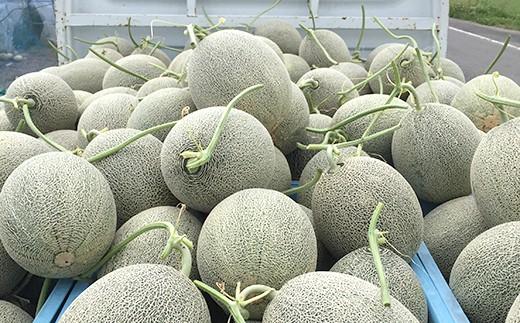 玉は重くて身詰まりがよく、果肉がしっかりとしています