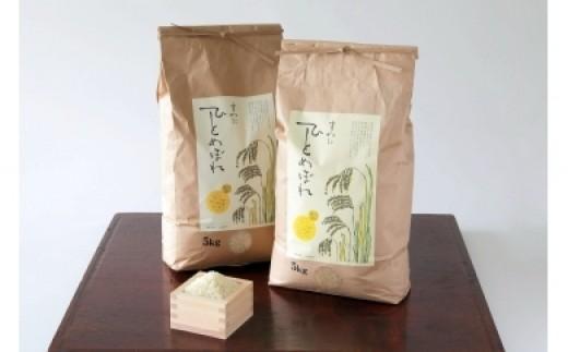 諏訪産米 ひとめぼれ【新米】5kg