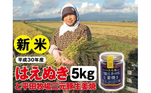 NA358 平成30年産 庄内米はえぬき 5kgと平田牧場三元豚「ご飯にかける生姜焼き」1個 SI