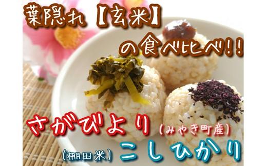 C60-O【新米予約】《H30年産米》葉隠れ『特選玄米20㎏』食べ比べセット【さがびより10㎏・コシヒカリ10㎏】《産地限定》