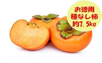 [№5991-0619]【お徳用】種なし柿 約7.5kg