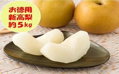 [№5991-0607]【お徳用】新高梨 約5kg (各産地)