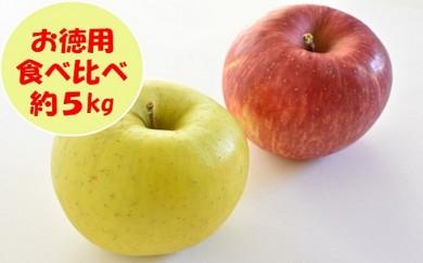 [№5991-0611]【お徳用】りんご食べ比べセット約5kg