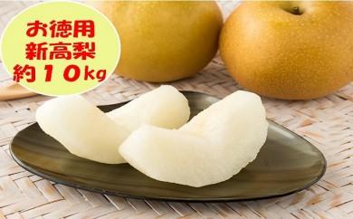 [№5991-0608]【お徳用】新高梨 約10kg (各産地)