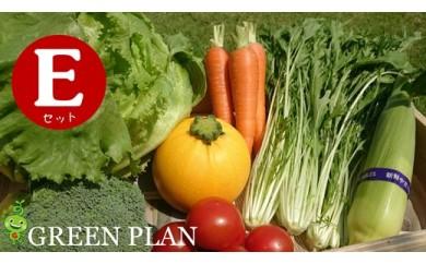 【半年間お届け】こだわり旬お野菜5~7種お得なEセット