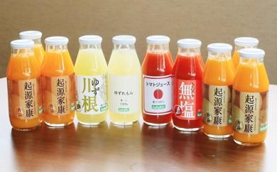 [№5786-2185]【クレジット限定】浜松そだちのみかんのジュースと柑橘・トマトの10本セット