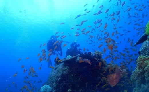 KTS04 ビーチ体験ダイビング+サンセットSUPクルージング(1名様分) 海底少年  寄付額55,000円