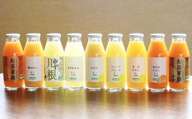 [№5786-2183]【クレジット限定】浜松そだちのみかんジュースと柑橘いろいろ9本セット