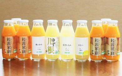 [№5786-2184]【クレジット限定】浜松そだちのみかんのジュースと柑橘いろいろ10本セット
