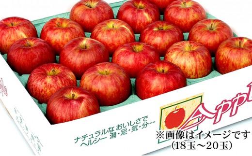 [№5764-0342]りんご シナノスイート 約5kg(18玉~20玉)