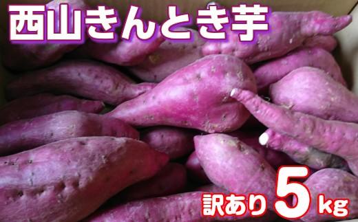 RK-55【訳あり】西山きんとき芋5kg