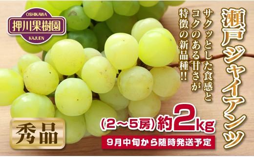 C-102 数量限定 宮崎県産 瀬戸ジャイアンツ 2kg 1箱【7,500pt】