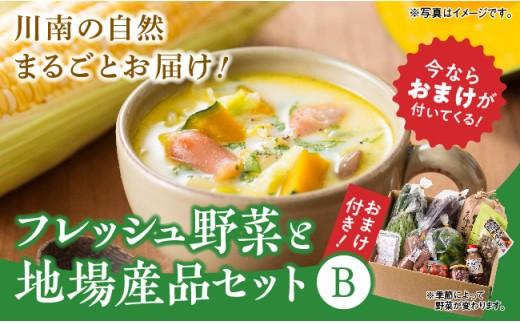 31-02P川南町からお届け!フレッシュ野菜と地場産品セットB