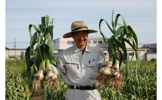 Yamazaru農園のジャンボにんにく(2.5kg)