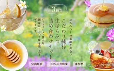 DJ37 <国産>蜂蜜3本セット【250g×3本】