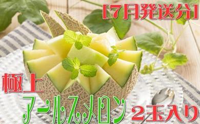 [№5745-1211]【高級フルーツ】極上アールスメロン 2玉入り 7月発送分