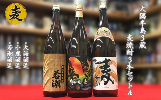 B2-3302/大隅半島3蔵 麦焼酎3本セットA(1800ml×3本)