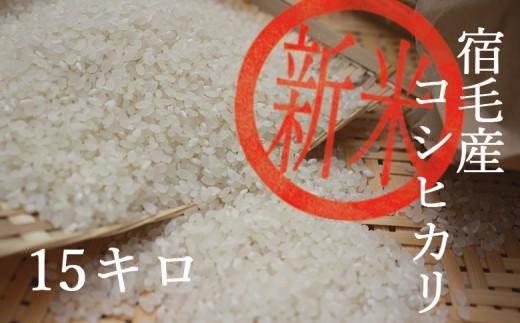 [024049]【新米】ふくい農園のおいしいお米(コシヒカリ15kg)