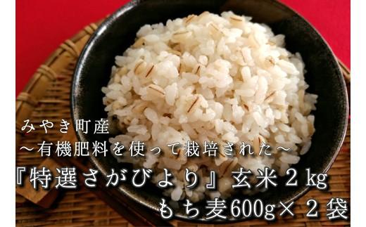 A14-O【新米予約】《H30年産》有機肥料使用≪特選さがびより≫【玄米2㎏】ともち麦セット