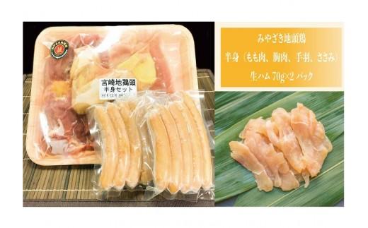 A104 自社養鶏場 宮崎県認定ブランド!みやざき地頭鶏美味しさチョイス 半身&ギフトセット