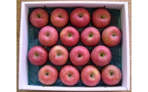 FY18-758 自然の恵みいっぱいの葉とらずふじりんご 約10kg