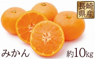 長崎県産 みかん 約10kg 【2018年12月より順次発送開始】
