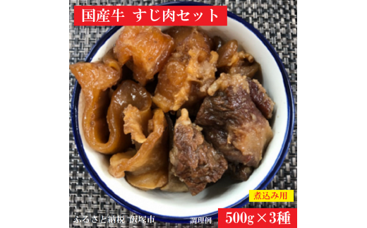 【A5-048】国産牛 煮込み用すじ肉セット