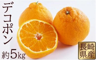 長崎県産 デコポン 約5kg 【2019年3月より順次発送開始】