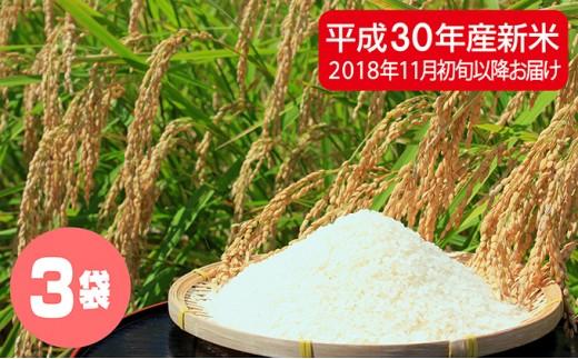 [№5641-0269]滝川産 直播米ななつぼし 30kg