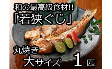 和の最高級食材「若狭ぐじ」丸焼き (大サイズ)1匹