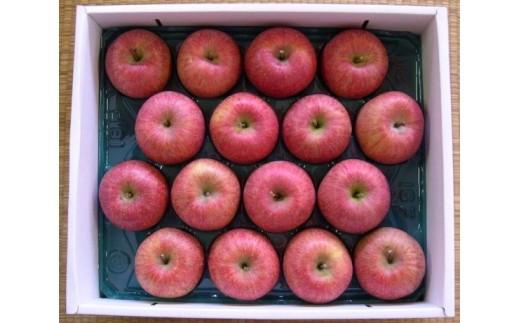 FY18-757 自然の恵みいっぱいの葉とらずふじりんご 大玉 約5kg