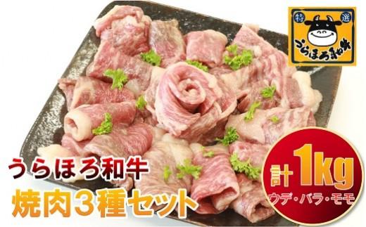 盛付イメージ(バラ肉)