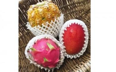 【フルーツセット】【お土産】【お中元】沖縄産マンゴー&パイン&ドラゴンフルーツ3点セット(梅)